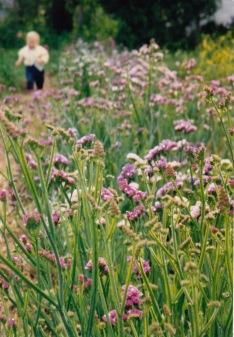 Marnie running through the flowers