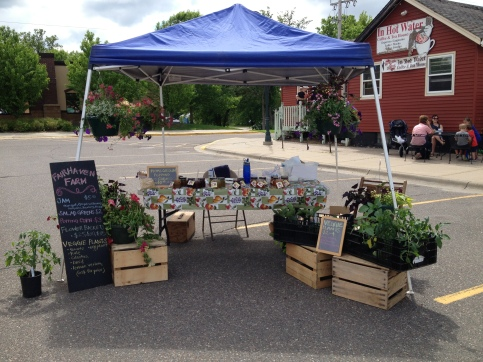 Our stand at the first Annandale Farmers Market