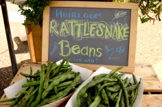 Heirloom Rattlesnake pole beans at the Annandale Farmers Market