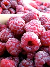 summer raspberries